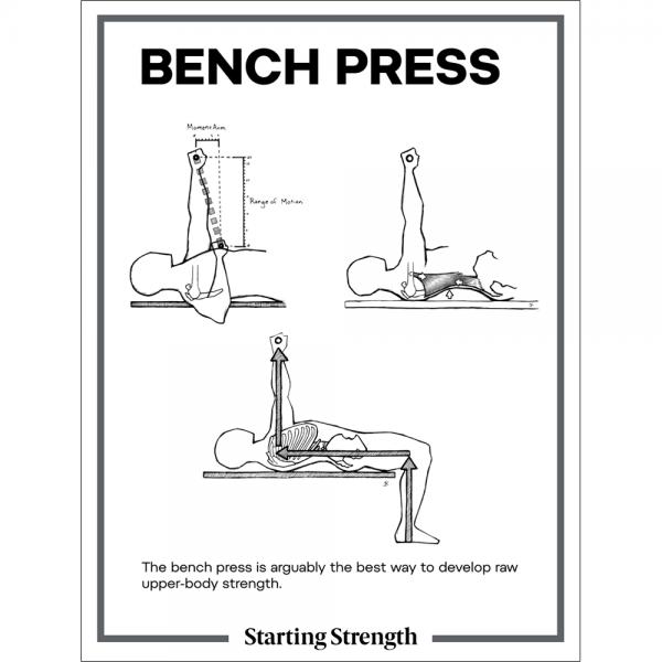 poster starting strength bench press